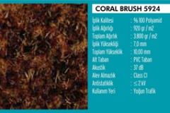 Coral Brush Activ Paspas